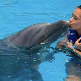 Kiss a Dolphin - Bucket List Ideas