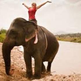 Ride an elephant in India - Bucket List Ideas