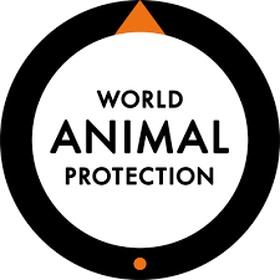 Collaborate with an animal organization - Bucket List Ideas