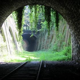 Explore the abandoned tracks of La Petite Ceinture - Bucket List Ideas