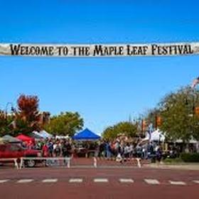 Attend A Unique Small-Town Festival - Bucket List Ideas