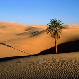 The Sahara Desert - Bucket List Ideas