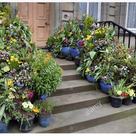 Buy flowers, leave them with a note on the doorstep - Bucket List Ideas