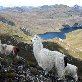 Visit Ecuador - Bucket List Ideas