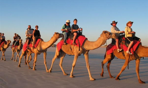 Ride a camel in the desert - Bucket List Ideas