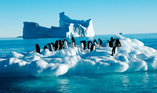 Go to Antarctica - Bucket List Ideas