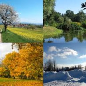 Complete a bucket list with at least 10 things on for every season for a whole year - Bucket List Ideas