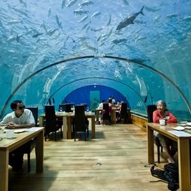 Eat in resturant underwater - Bucket List Ideas