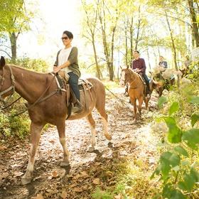 Ride a Horse - Bucket List Ideas