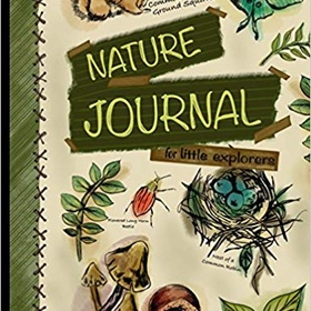 Keep a nature journal for an entire year - Bucket List Ideas