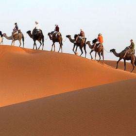 Ride a Camel in Morocco - Bucket List Ideas