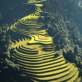 Hike around the rice fields of Sapa, Vietnam - Bucket List Ideas