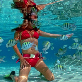 Go snorkeling over a coral reef - Bucket List Ideas