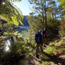Hike the 10 Great walks of New Zealand - Bucket List Ideas