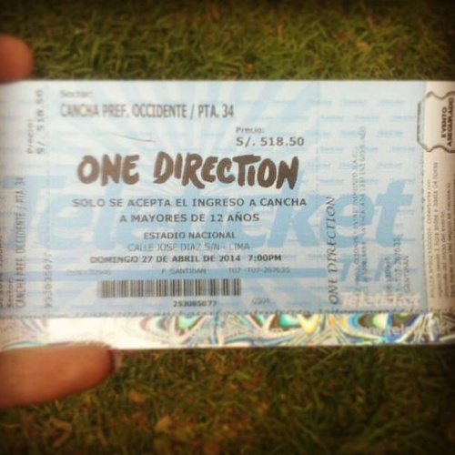 Go to a One Direction concert - Bucket List Ideas