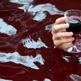 Swim in wine - Bucket List Ideas