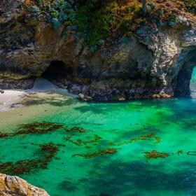 Visit Point Lobos in CA - Bucket List Ideas