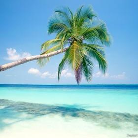 Visit the Carribean - Bucket List Ideas