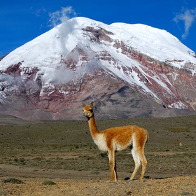 Climb Chimborazo - The closest point on earth to outer space - Bucket List Ideas
