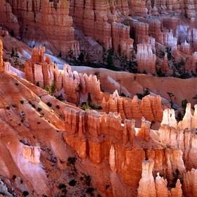 Visit Bryce Canyon in Utah - Bucket List Ideas