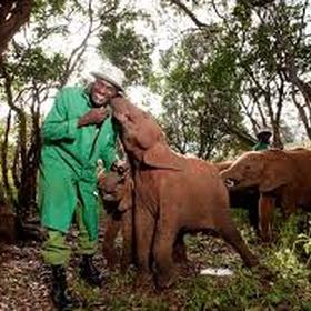 David Shedrick Wildlife Trust - Bucket List Ideas