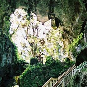 Visit Mangapohue Natural Bridge, New Zealand - Bucket List Ideas