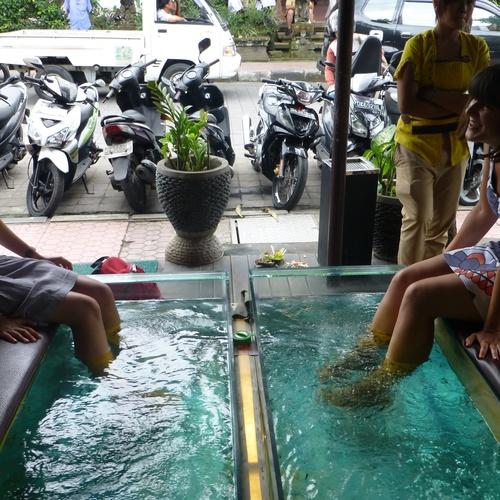 Go for a fish pedicure - Bucket List Ideas