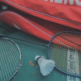 Play Badminton - Bucket List Ideas