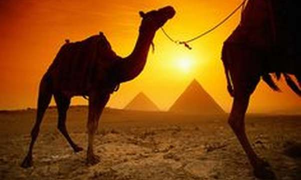 Visit the Pyramids of Giza - Bucket List Ideas