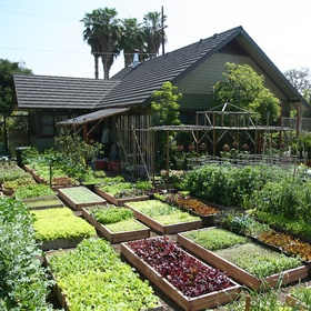 Become as Self Sufficient as possible - Bucket List Ideas
