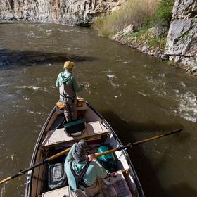 Fly Fish a Blue Ribbon Trout Stream - Bucket List Ideas