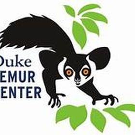Visit the lemur center at Duke University - Bucket List Ideas