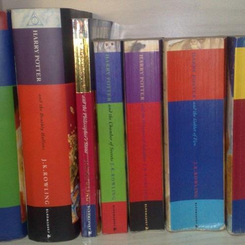 Read Harry Potter to my Children - Bucket List Ideas