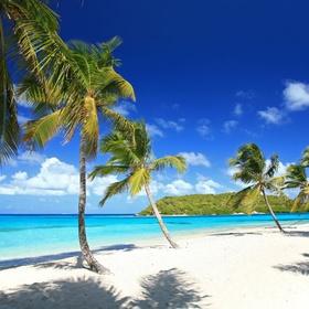 Swim in the Atlantic at Tobago - Bucket List Ideas