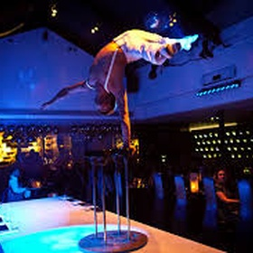 Dine at Curcus in London - Bucket List Ideas