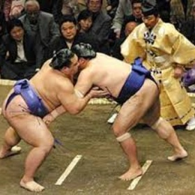 See a Sumo match ~Japan - Bucket List Ideas