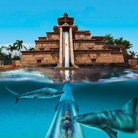 Slide Down the Atlantis Slide in the Bahamas - Bucket List Ideas