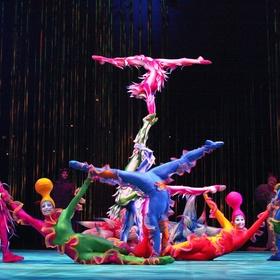Go to a Cirque du Soleil Show - Bucket List Ideas