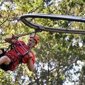 Ride on a zipline roller coaster - Bucket List Ideas
