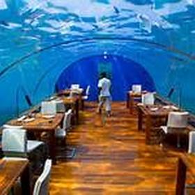 Eat at the undersea restaurant, Ithaa - Bucket List Ideas