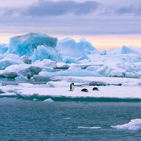 Cruise to Antartica - Bucket List Ideas