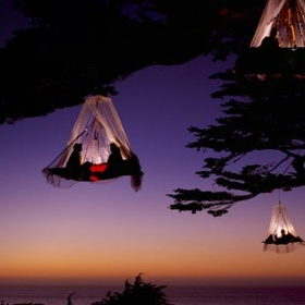 Extreme camping in the trees - Bucket List Ideas