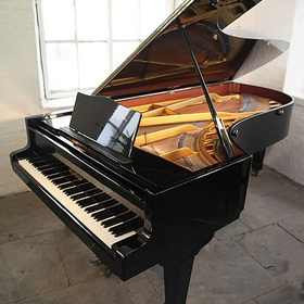Buy a grand piano - Bucket List Ideas