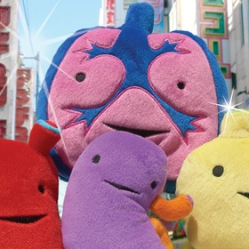 "Buy a plush organ on ""I heart guts - Bucket List Ideas"