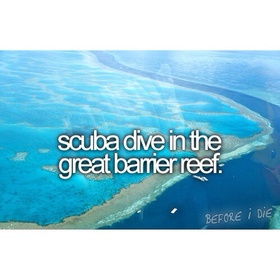 Scuba dive at the great barrier rief - Bucket List Ideas