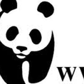 Donate money to help animals - Bucket List Ideas