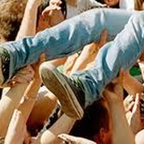 Crowd surf - Bucket List Ideas