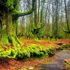 Visit Gorbea Natural Park In Spain - Bucket List Ideas