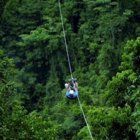 Zipline through a tropical forest - Bucket List Ideas