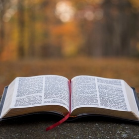 Read the entire Bible in a year - Bucket List Ideas